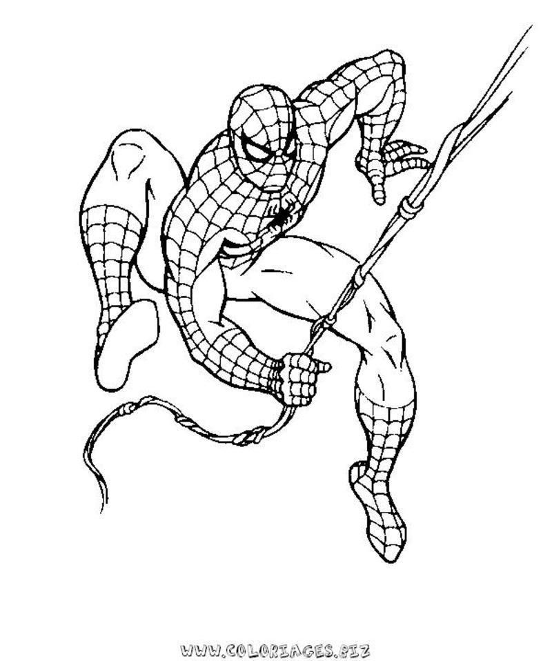 Coloriage spiderman - Coloriage spider man ...